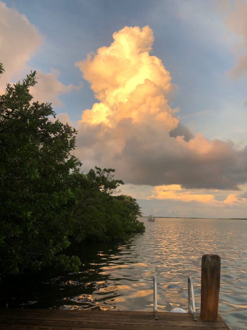 Kelli Hull Tony McLean Brown Happy Guide Sunrise Key West Sugarbush