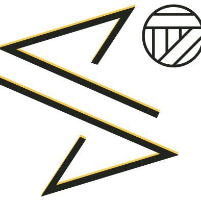 steelvolley logo